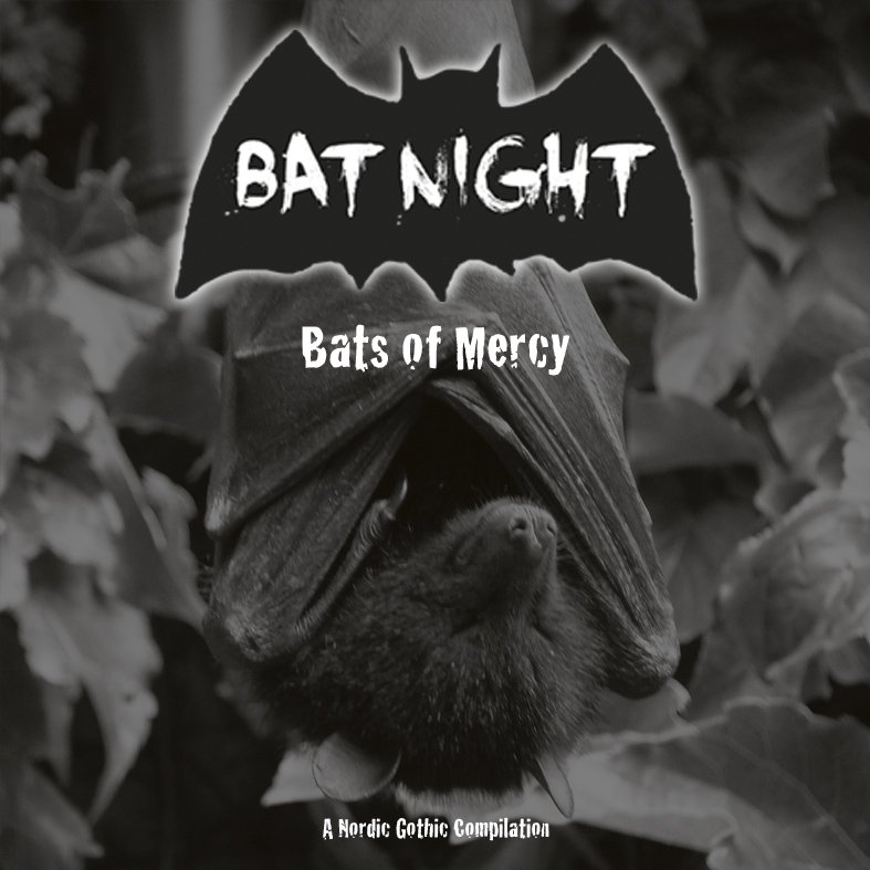 Bat Night - Bats Of Mercy - Bats of Mercy2