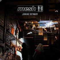 Mesh_Looking