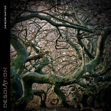 desolation-desoriented-artwork