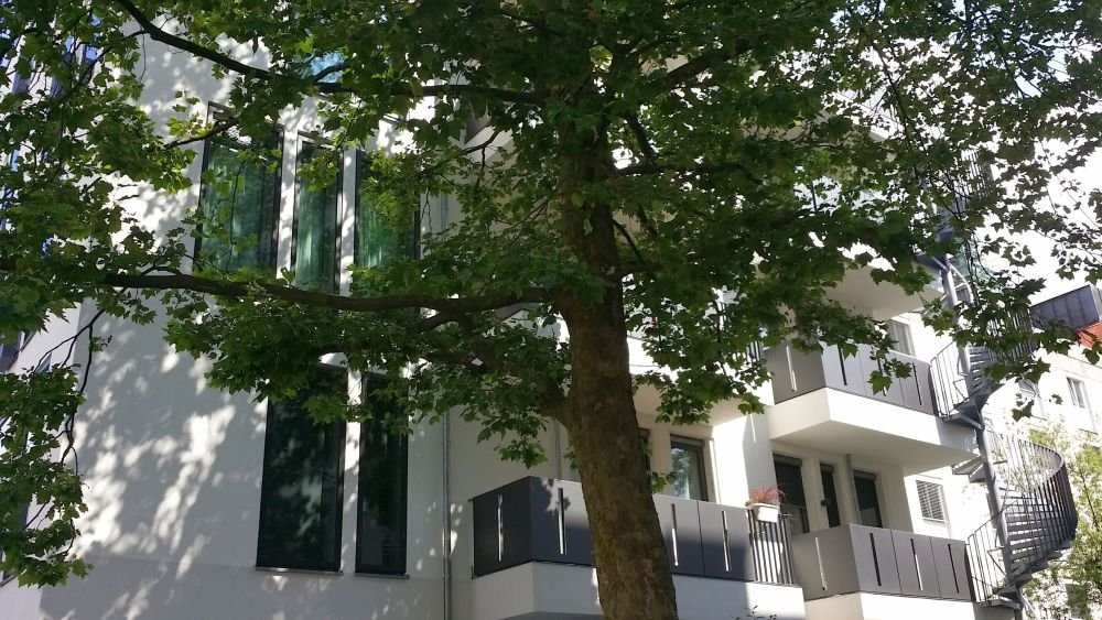Schwanthalerstr Haus 80x