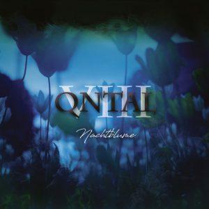 QN_VIIIN