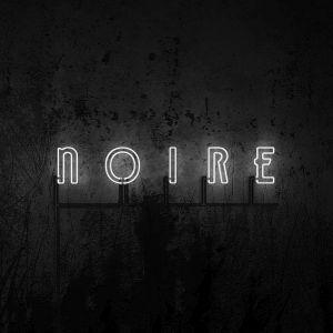 VNV Nation Noire