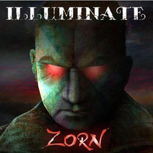 388470_01_ILLUMINATE_Zorn_Cover